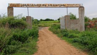 Tadakanapalli Cattle Hostel Got Second Place In Milk Production - Sakshi