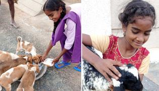 Girl Haritha Helping Food And Milk Packets To Dogs And Goats At Kurnool - Sakshi