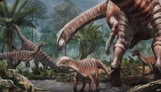 Patagonian fossils show Timid dinosaurs Lived In herd mentality - Sakshi