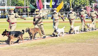 Kadapa Dogs Special Effort To Make Progress In Critical Cases - Sakshi