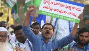 Ysrcp protests delhi demanding special status ap - Sakshi