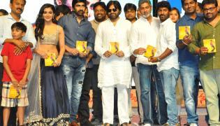 Nela Ticket Movie Audio Launch photo gallery - Sakshi