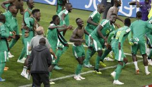 Poland and Senegal World Cup match Photo Gallery - Sakshi
