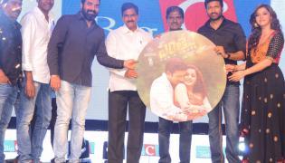 Pantham Audio Launch Photo Gallery - Sakshi