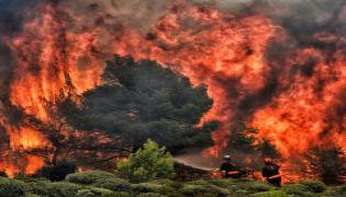 Greece wildfires: Dozens dead in Attica region Photo Gallery - Sakshi