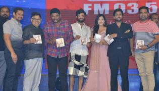 Geetha Govindam Audio Launch Photo Gallery - Sakshi