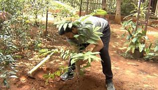Megastar Takes Up The Green Challenge Photo Gallery - Sakshi