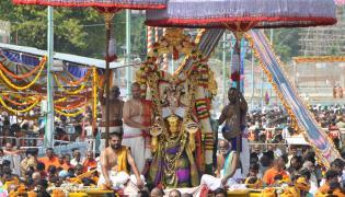 GOVINDARAJA RIDES ON HANUMANTHA VAHANAM  - Sakshi