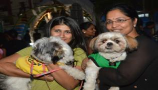 Halloween for Dogs at Dog Park Photo Gallery - Sakshi