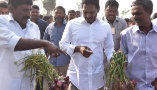 YS jagan padayatra at Sikakulam District photo gallery - Sakshi