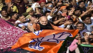 BJP supporters celebrate after trends indicate clean sweep  for NDA - Sakshi