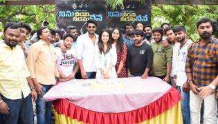 Ninu Veedani Needanu Nene Success Celebrations Photo Gallery - Sakshi