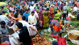 Ganesh Chaturthi Festival AP and Telangana Photo Gallery - Sakshi