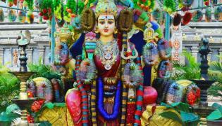 Vijayawada Kanaka Durgamma Gajula Mahotsavam Photo Gallery - Sakshi