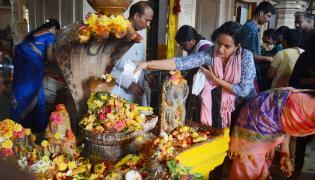 Telugu States Celebrating Nagula Chavithi Festival Photo Gallery - Sakshi
