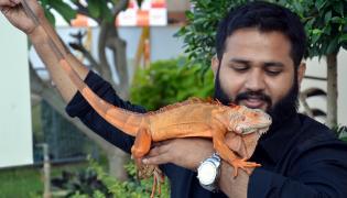 Petex India 2019 in Hitex Exhibition Center Photo Gallery - Sakshi