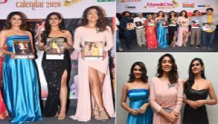 My South Diva Calendar 2020 Launch Photo Gallery  - Sakshi