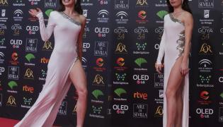 Spain Goya Awards 2020 - Sakshi