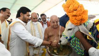 CM YS Jagan Participated In Go Puja At Narasaraopet - Sakshi