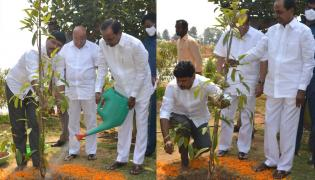 CM KCR  Birthday Highlights Of One Crore Tree Plantation Programme Photos - Sakshi