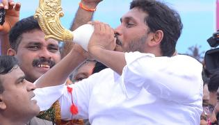 YSR Congress Party Celebrates 11th Formation Day  - Sakshi