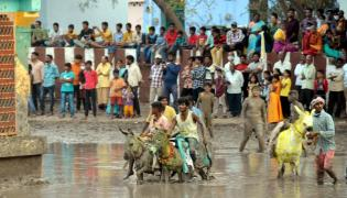 Devotion to the goddess in the mud around the temple Photo Gallery - Sakshi