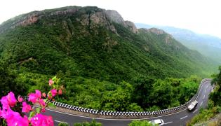 Seshachalam Hills Pics - Sakshi