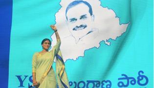 YSR Telangana Party Flag Innovation Photo Gallery - Sakshi