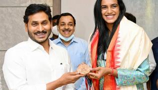 PV Sindhu meets AP CM Jagan Mohan Reddy Photos - Sakshi