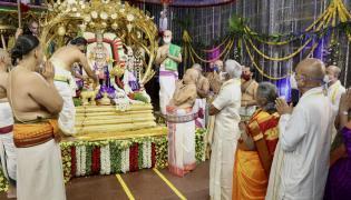 Tirumala Brahmotsavam : Srivaru on Kalpavriksha Vahanam Photo Gallery - Sakshi