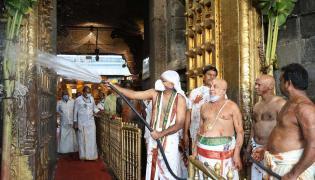 Koil Alwar Thirumanjanam Performed At Tirumala Tirupati Temple Photo Gallery - Sakshi