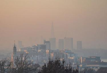 Air Pollution Cause The Damage To Human Brain - Sakshi