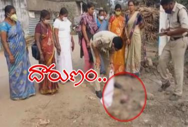 West Godavari: Dogs Dragged Infant Body To The Road - Sakshi