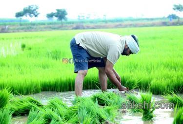 YSRCP MLA Alla Rama Krishna Reddy agricultural