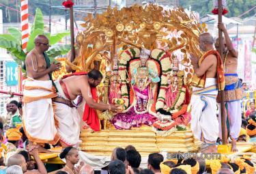 kalpavriksha vahanam 4th day of srivari brahmotsavam