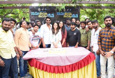 Ninu Veedani Needanu Nene Success Celebrations Photo Gallery - Sakshi