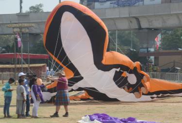 telangana kite festival 2020 Photo Gallery - Sakshi