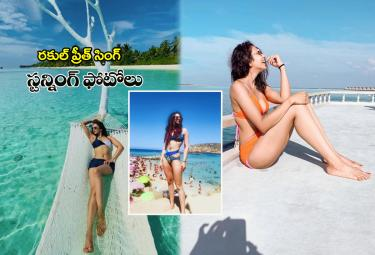 Rakul Preet Singh stunning photos Photo Gallery - Sakshi