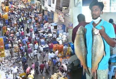 Huge Rush At Fish Market On Occasion Of Mrigasira Karthi - Sakshi