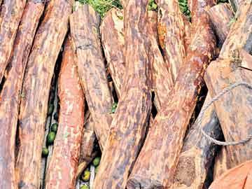 ఎర్రచందన కలకలం - Sakshi