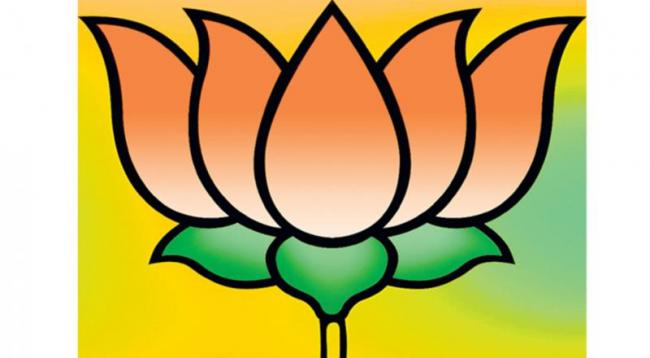 BJP leaders doubts who will give guarantee about there posts