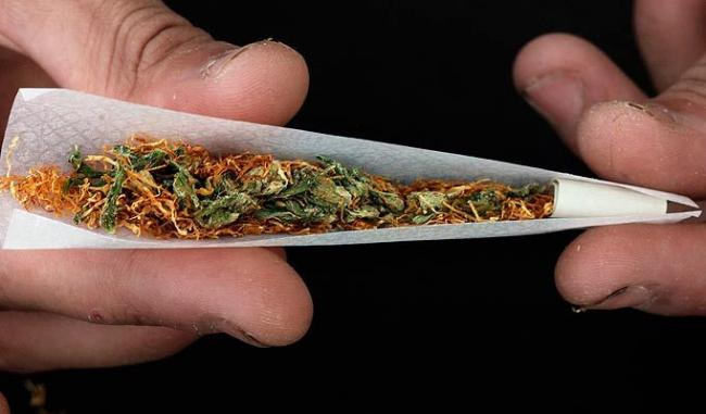 Marijuana gang arrested - Sakshi