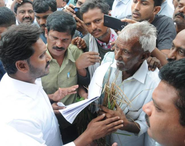 YS Jagan meet with farmers in Jammalamdugu constituency - Sakshi