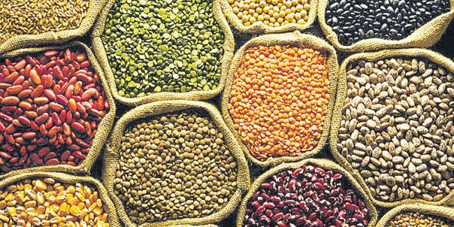 Government removes restrictions on export of all types of pulses - Sakshi - Sakshi