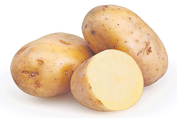 potato uses - Sakshi