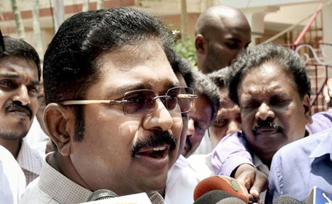 ttv dinakaran won in rk nagar by election - Sakshi