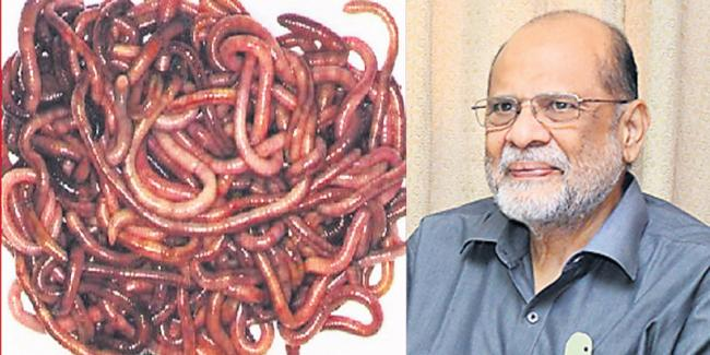 Earthworm is the pulse of the soil - Sakshi