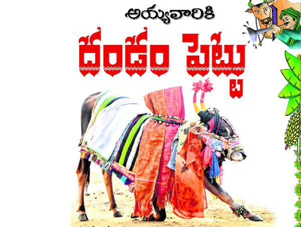 special story on sankranthi and gangireddu melam - Sakshi