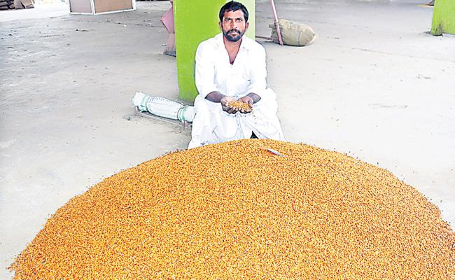 formers not get maximum cost price to crops  - Sakshi
