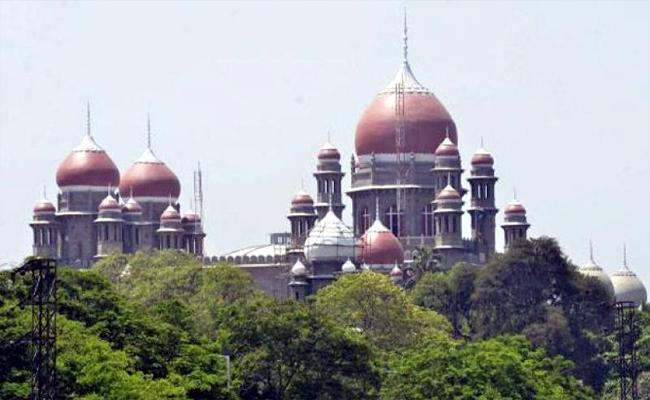 High Court Again Serious Over Cock Fights - Sakshi